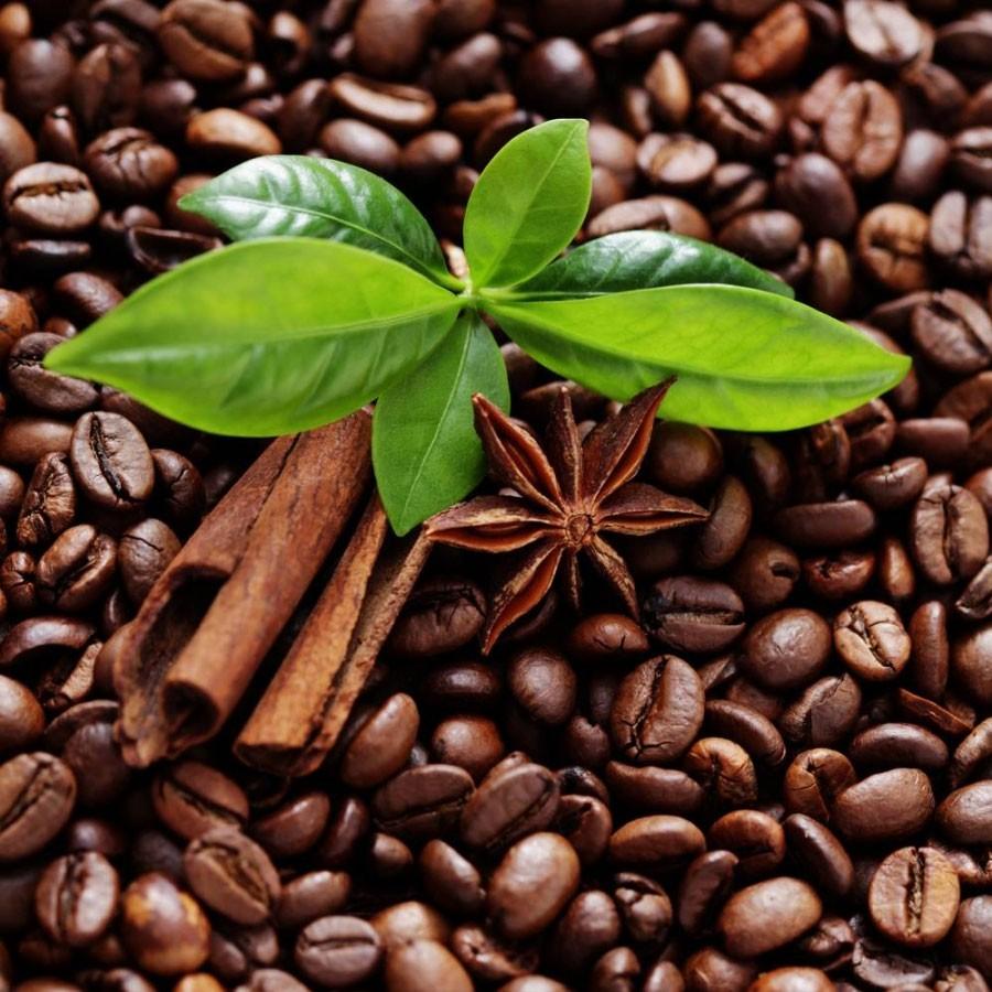 Кафе Домік вартаўніка: Поиск еды и напитков в кафе